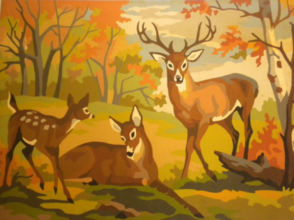 Deer Paint By Numbers- Top Tips For Filling The Paint By Numbers Kit