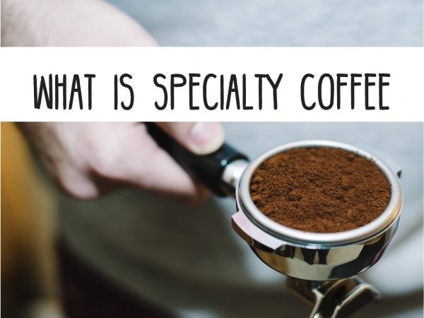 What Are The Elements To Give Speciality In Coffee?